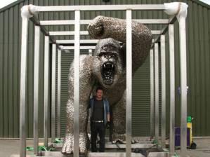 Gorilla-uri